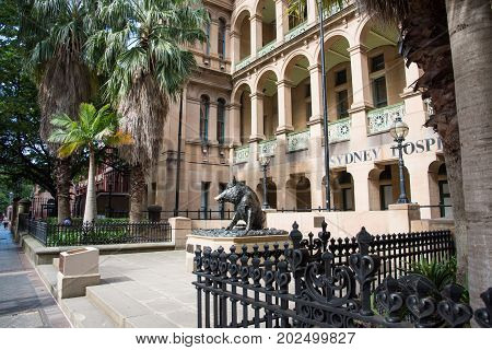 SYDNEY,NSW,AUSTRALIA-NOVEMBER 20,2016: Sydney Hospital with wild boar fountain and tropical trees in downtown Sydney, Australia