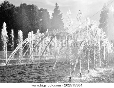 The gush of water of a fountain. Black and white.