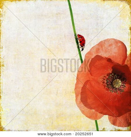 lovely background image with ladybird and floral elements. useful design element.