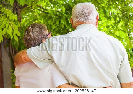 Cute hugging elderly couple in love walking in the park on a summer day back view
