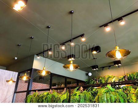 Modern chandelier hanging under ceiling Beautiful modern chandelier in coffee shop.
