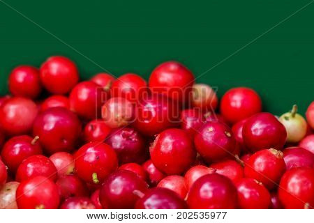Forest cranberries healthy on green background. Autumn edible useful berries. Natural food of wild nature, rich in vitamins. Fall season of picking berries in Northern Europe and the tundra.
