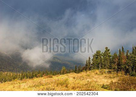 Scenic landscape in mountain taiga terrain in a cloud summer day. Sheregesh, Russia.
