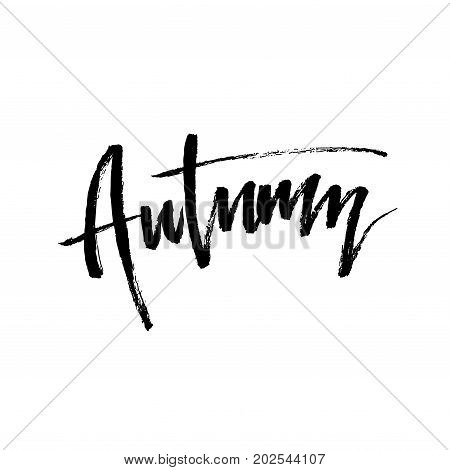 Autumn brush lettering. Hello Fall greteng cards, banners, autumn season phrase for posters design. Handwritten modern brush pen calligraphy isolated. Vector illustration stock vector.