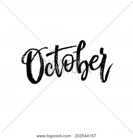 October. Autumn brush lettering. Fall greteng cards, banners, autumn season phrase for posters design. Handwritten modern brush pen calligraphy isolated. Vector illustration stock vector.