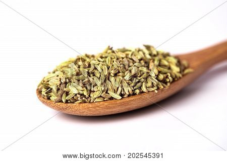 close up fennel seed in wooden spoon on white background