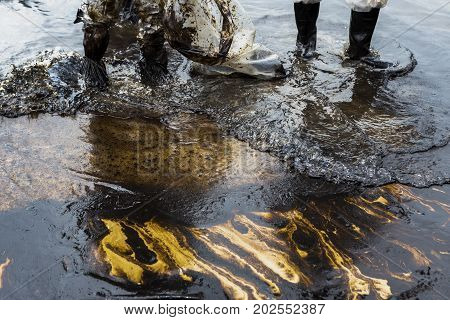 Workers remove and clean up crude oil spilled from Prao Bay on July 31 2013 in Samet Island Rayong Thailand