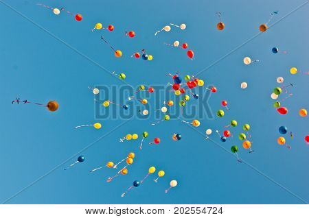 Blue Sky Color Balloons