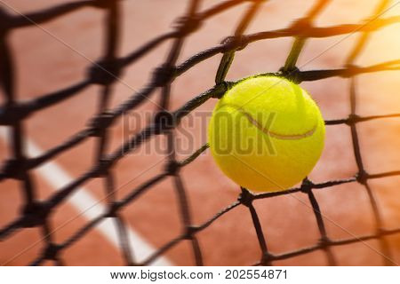 Tennis ball in net, close up