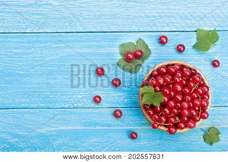 Red currant berries in a wooden bowl with leaf on the blue wooden background with copy space for your text. Top view.