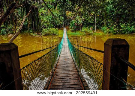 The Suspension Bridge Over The Lake, Borneo, Sabah, Malaysia