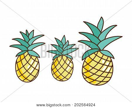 Tropical ananas pineapple fruit icon logo on white background. Vector illustration for textile print, wallpaper, fashion design