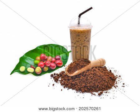 fresh coffee seeds coffee powder and iced coffee isolated on white background