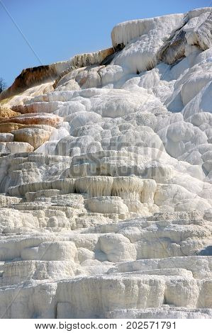 Travertine terraces created by centuries of mineral deposits form the Mammoth Hot springs' geology