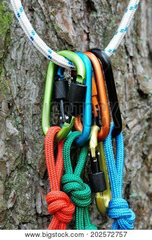 Carabiner Climbing Close-up.