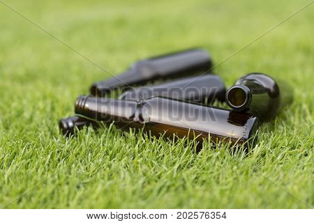 Empty beer bottles in a grass field with a vague background