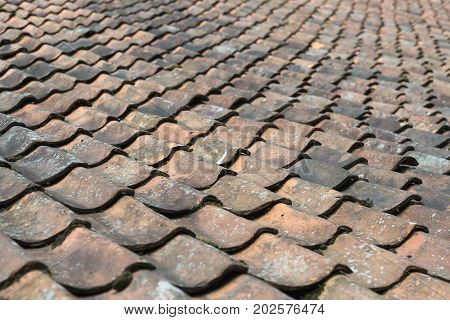 Old ceramic baked orange blue roof tiles on a big authentic farm in Netherlands