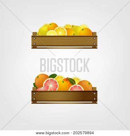 Wooden crates with tropical fruits.  Fruit drawers front view. Ripe lemons, oranges and grapefruits in fruiterer boxes. Vector illustration isolated on a light background.