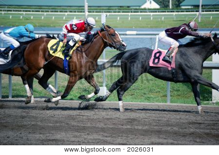 Carreras de caballos de carreras