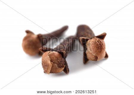 three Cloves isolated on a white background