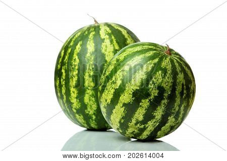 Ripe Striped Watermelon Isolated On White.composition Of Two Watermelon