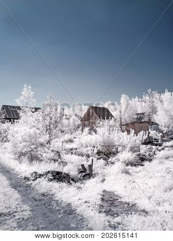 Infrared photography. Moscow region. Summer. Plots of land
