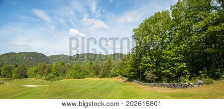 Landscape on a golf course with green grass, trees, beautiful blue sky and a sand trap in the background, panorama