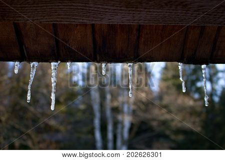 Icicle/ The icicle hang in edge roof.