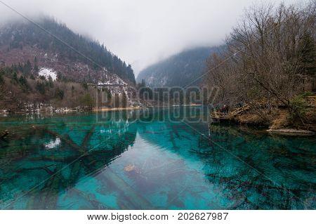 Jiuzhaigou nature (Jiuzhai Valley National Park), China.jiuzhaigou national park reserve. Blue lake in the reserve