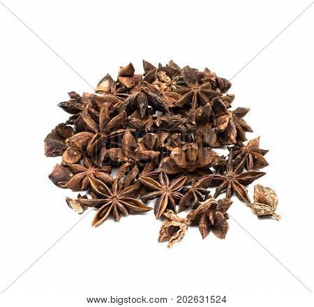 Star anise isolated on white backgound. Aniseed badian.