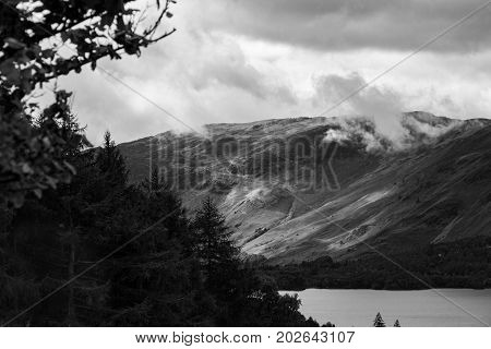 Forest And Derwent Water, Keswick, Lake District, Uk- Telephoto Monochrome
