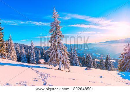 Winter wonderland landscape in carpathian mountains, Romania