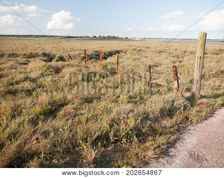 Safety Danger Old Rusty Barbed Wire Fence In Flat Countryside