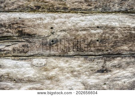 Old grunge wood as background in detail
