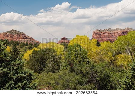 Bell Rock (center) and Courthouse Butte (right) as seen from the Red Rock Ranger Station just south of the village of Oak Creak in Yavapai County Arizona USA