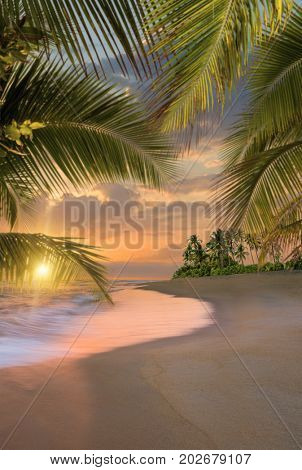 Paradise Tropical beach at sunset