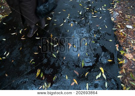 Yellow Leaves On Asphalt And Puddles