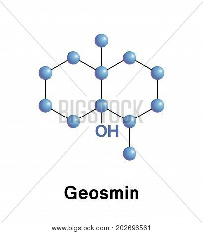 Geosmin is an organic compound with a distinct earthy flavor and aroma produced by a type of Actinobacteria