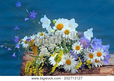 Bouquet of wild flowers on the water background