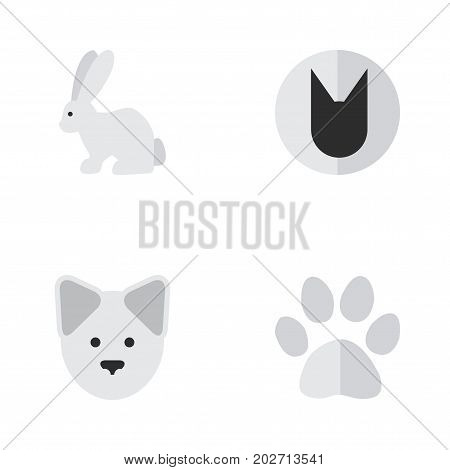 Elements Hare, Foot, Tomcat And Other Synonyms Rabbit, Wolf And Paw.  Vector Illustration Set Of Simple Wild Icons.