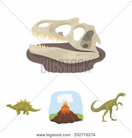 Volcanic eruption, gallimimus, stegosaurus, dinosaur skull. Dinosaur and prehistoric period set collection icons in cartoon style vector symbol stock illustration .