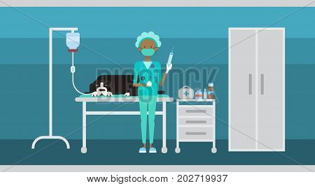 Medical Doctor Veterinarian Cure Dog In Clinic Of Veterinary Assistance Flat Vector Illustration