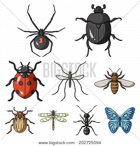 Insects set icons in cartoon design. Big collection of insects vector symbol stock illustration