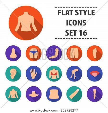 Part of body set icons in flat style. Big collection part of body vector symbol stock