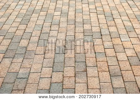 Stone pavement in perspective. Stone pavement texture
