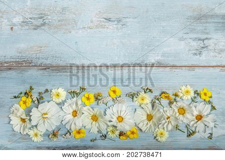 A bouquet of white cosmea or cosmos on blue boards. Garden yellow flowers over handmade wooden table background. Backdrop with copy space. Mother's, Valentines, Women's, Wedding Day concept.