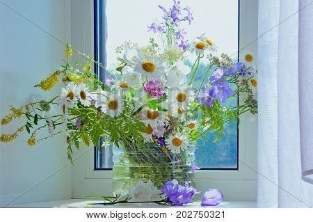 Bouquet of summer wildflowers in sunlight near a window