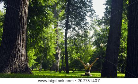 Rear view of young woman sitting in padmasana against the trees at summer day