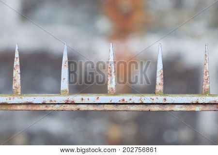 Spiked Fence, Rusty Old Spikes