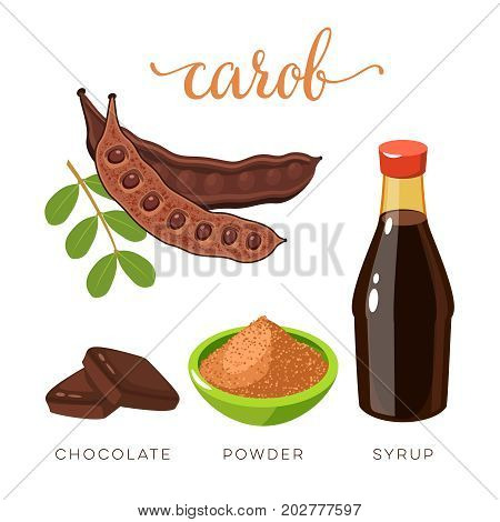 Superfood fruit. Set of carob pod bean with seeds choko tile carob powder and syrup. Vector illustration cartoon flat icon isolated on white.